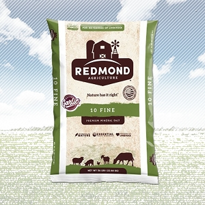 Redmond Salt w/Garlic
